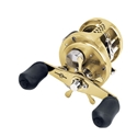 Shimano Calcutta TE 100 GT Image