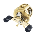 Shimano Calcutta TE 200 Image