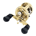 Shimano Calcutta TE 300 Image