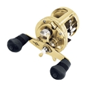 Shimano Calcutta TE 400 Image