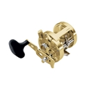 Shimano Calcutta TE 700 Image